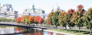 Read more about the article Le Canada entend accueillir 1 million d'immigrés